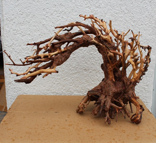 ADM Scaping Bonsai Wave M